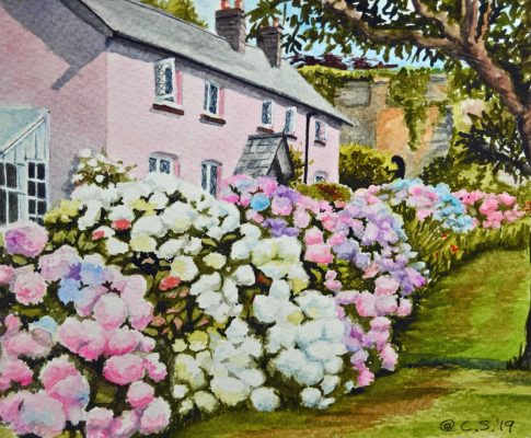 No. 22  Hydrangea Cottage – Time Lapse Watercolour Sketch