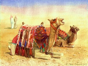 """Camels - Wanna Ride?"" by Carie Sauzé"