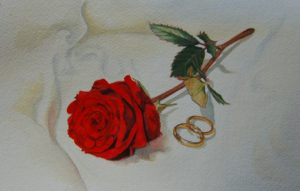 """Wedding Rose"" by Carie Sauzé"