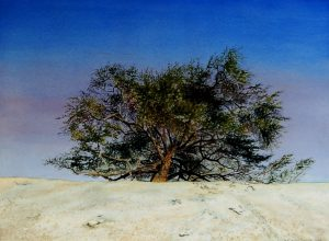 """The Tree of Life - Bahrain"" by Carie Sauzé"