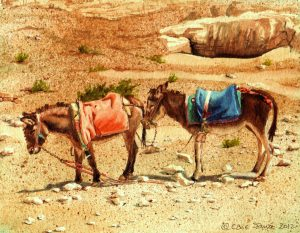 """Waiting Donkeys"" by Carie Sauzé"