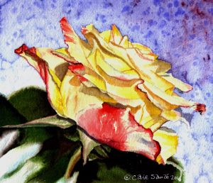 """Pink and Yellow Rose 2"" by Carie Sauzé"